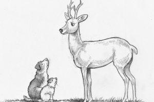 Deer Roe FD3