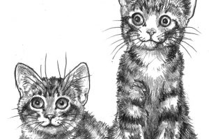 ch24 2 kitties